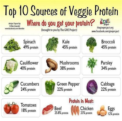 vegetables protein protein veggies and more on