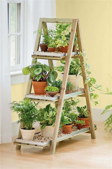 Indoor Plant Display | ideas of how to display indoor plants harmoniously