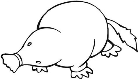 mole coloring page coloring pages