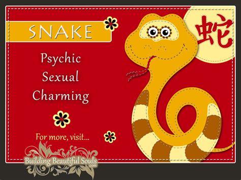new year animal snake zodiac snake year of the snake