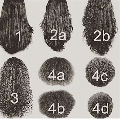 curl pattern hair types curl patterns hair tips hair care pinterest curl