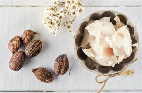 best shea butter for skin 16 simple ways to make the best lotion for skin in winter