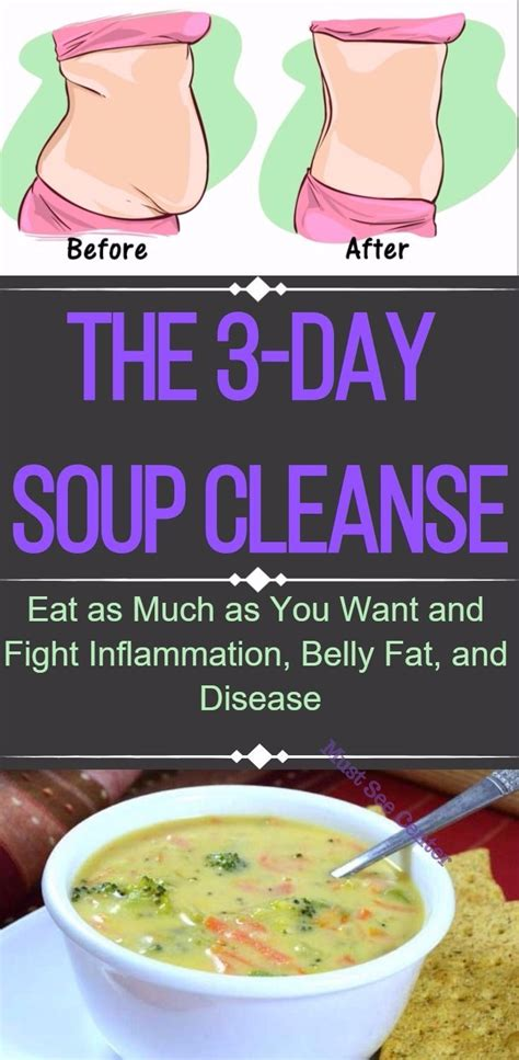 3 Day Soup Detox Plan best 25 3 day cleanse ideas on 3 day juice