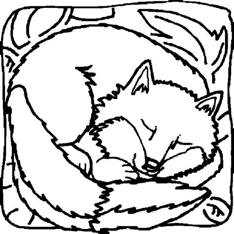 Coloriage Renards 224 Colorier Allofamille White Fox Coloring Page