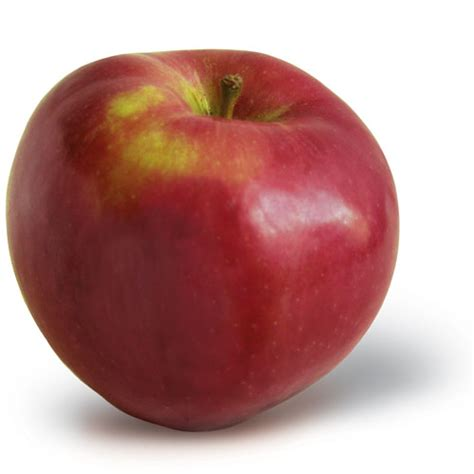 apple new york home new york apple growers ny apple association