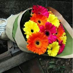 Boxed Roses Flower Delivery Amp Flowers Online Buy Flowers With Flowers For Everyone
