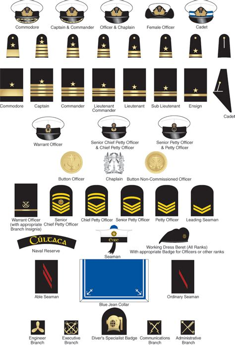navy uniform rank insignia the military insignia includes a variety of different