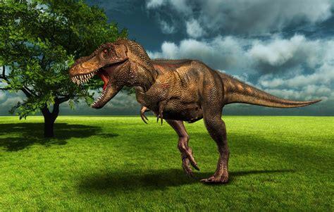 toda la informaci 243 n sobre tankard en colombia factor metal fotos de dinosaurios im genes de dinosaurios fondo pantalla dinosaurio en prado