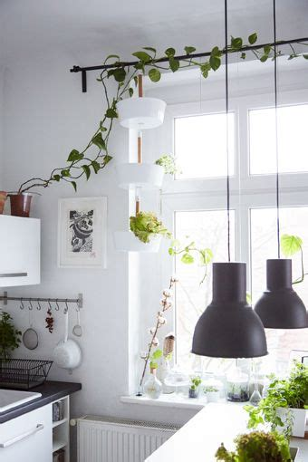 hang vertical planters   curtain rail  give