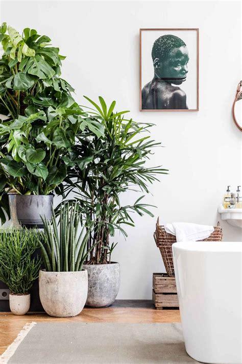 Backyard Landscape On A Budget Indoor Plants Incredible Plant Pots Polygon Pot D Printed
