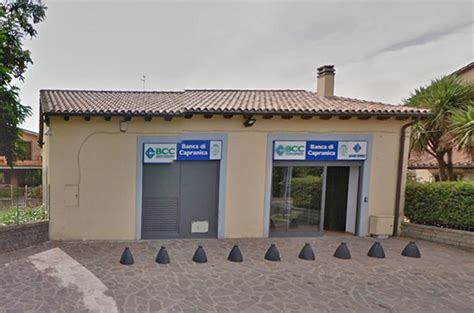 di viterbo credito cooperativo la bcc di roma incorpora capranica tusciaweb eu