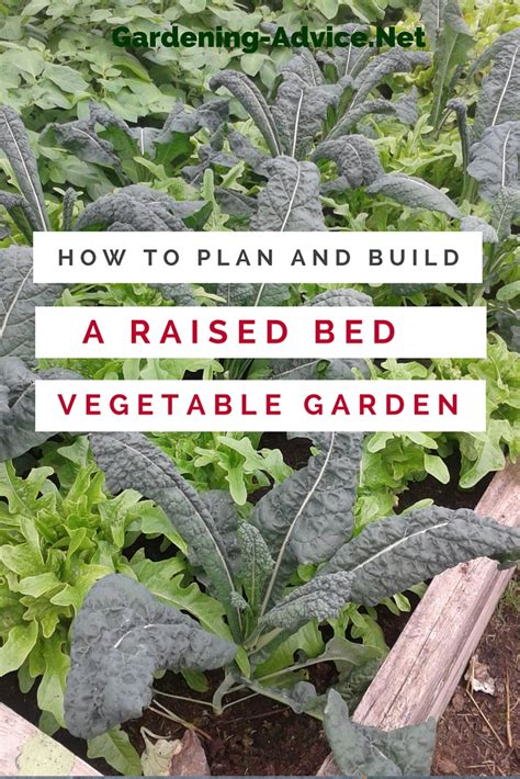The Raised Bed Vegetable Garden How To Plant A Vegetable Garden In Raised Beds