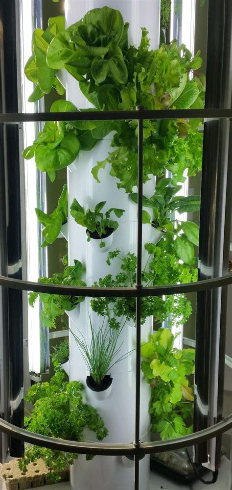 tower garden images  pinterest tower garden