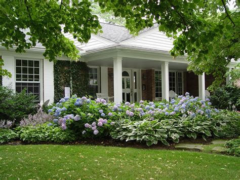 Landscaping Ideas Hydrangeas Landscaping With Hydrangeas Convenient Contact Form