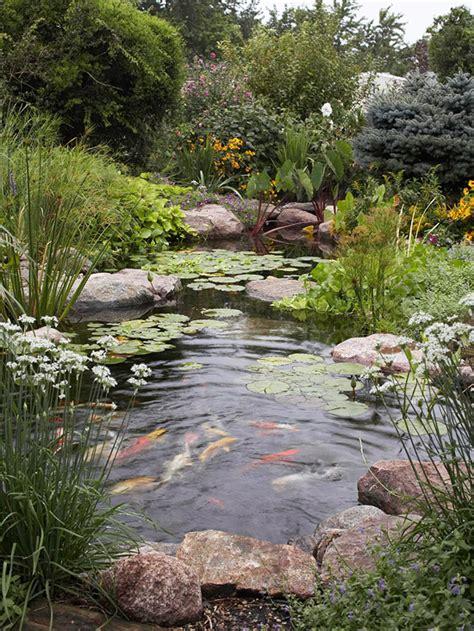 backyards for wildlife create a backyard wildlife habitat garden oasis water