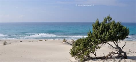 foto porto pino sardegna porto pino mare in sardegna scopri i caraibi