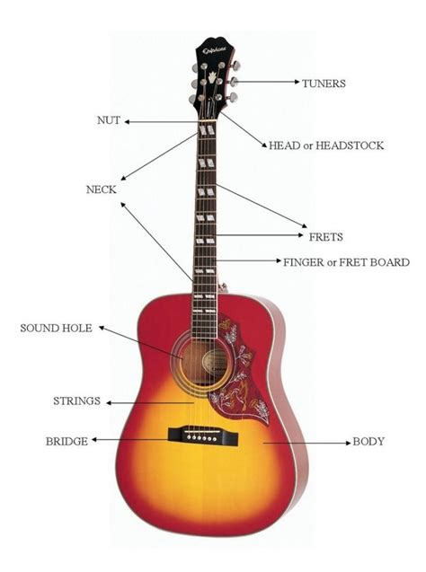 guitar parts diagrams diagram site