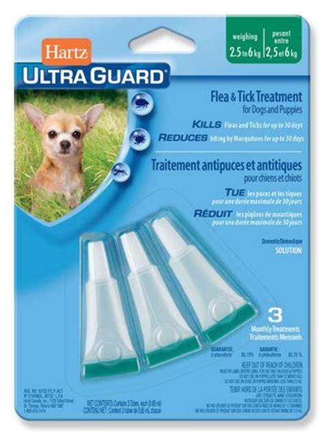 flea treatment for puppies 6 weeks hartz ultraguard flea tick treatment for dogs and puppies 2 5 to 6 kg walmart ca