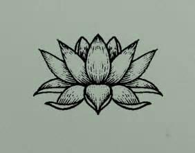 Lotus Drawings Lotus Flower On Behance