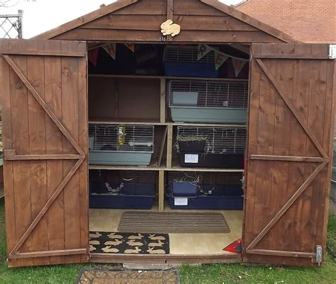 Rabbit Shed Ideas by Bunny Shed X Rabbit Shed Ideas Sheds And Bunnies