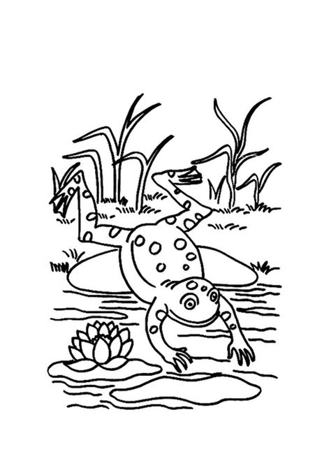 jumping frog coloring page jumping frog coloring page animal coloring pages of