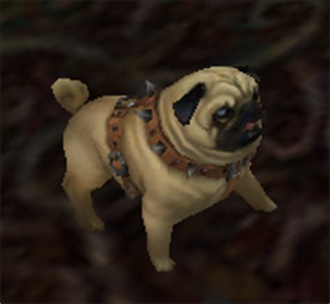 pug wow pug wowwiki your guide to the world of warcraft