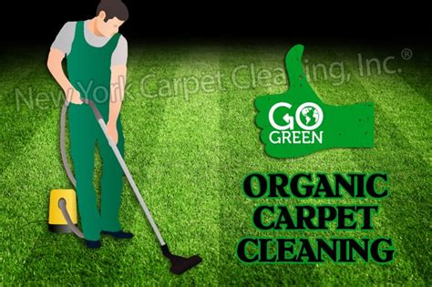 organic rug cleaning nyc organic carpet cleaning nyc www allaboutyouth net