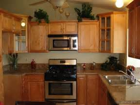 Maple Kitchen Furniture Cinnamon Maple Kitchen Cabinets Home Design Traditional