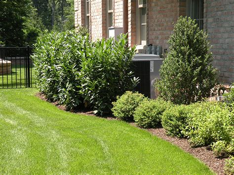 Side Of House Garden Ideas Photograph Landscaping Landsca