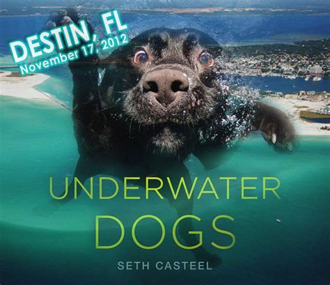 the on 30a books seth casteel book signing at bass pro shops 30a