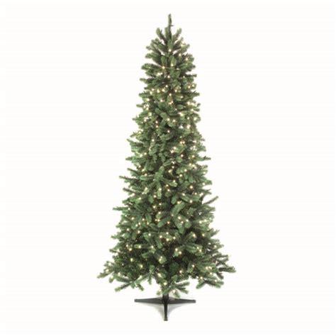 puleo christmas trees medicinebtg com