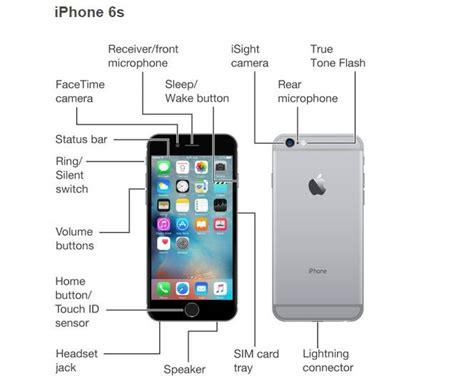 button layout iphone 6 iphone 6 components diagram iphone 6 introduction