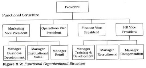 pattern of organization chart what are the different patterns used in departmentalization