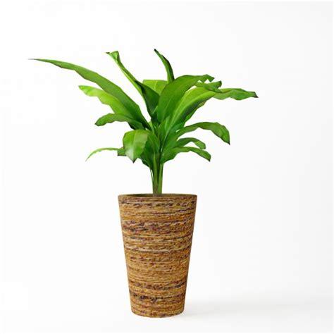pots for plants decorative plant pot 3d model cgtrader com