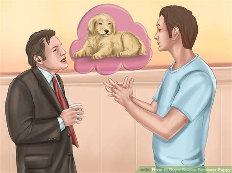 questions to ask when buying a golden retriever puppy 3 ways to buy a golden retriever puppy wikihow