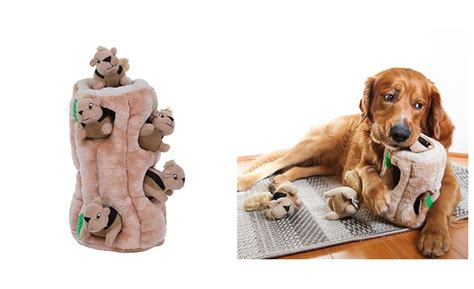 Puppy Indoor Toys indoor toys toys chew toys to keep your occupied