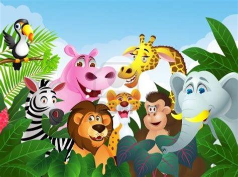 imagenes de animales con z los animales clasificaci 243 n la naturaleza