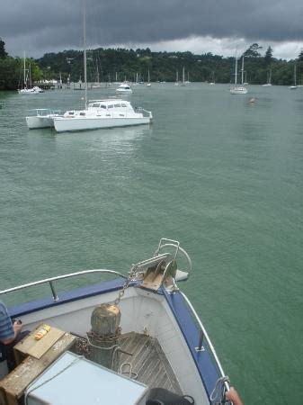 red boat fishing charters auckland the red boats riverhead cruiser auckland central