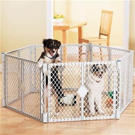 recinti per cuccioli da interno recinti per cani accesori come scegliere un