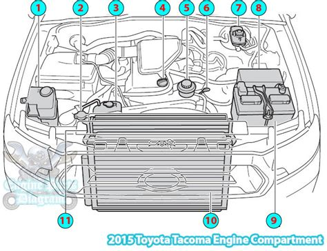 car wiring jaguar engine parts wiring diagram 90