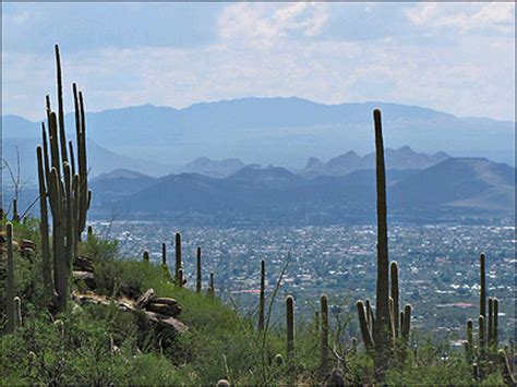Search Tucson Az Search Mls In Tucson Az Real Estate