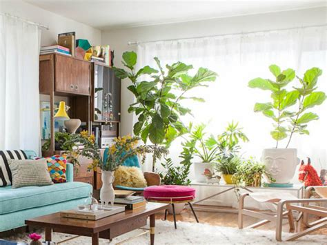 living room plants 10 cheerful living room ideas with plants covet edition
