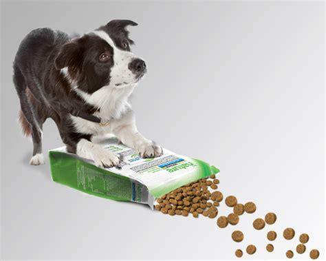 alimentos mascotas comida para mascotas alimentos para mascotas