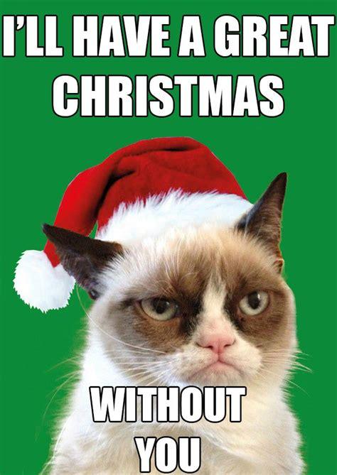 Cat Christmas Memes - grumpycat cat holiday funny grumpy cat pinterest