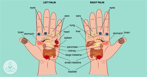Relieve Burning Sensation In The And Palms With These Remedies And Personality Grooming by Reflexology Press Here On Your Palm To Relieve Almost Any
