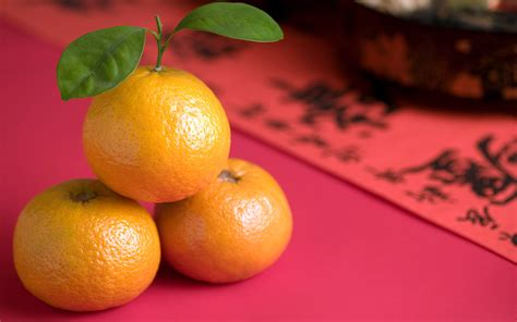 new year oranges meaning cny oranges think fresh fresh fruits wholesaler