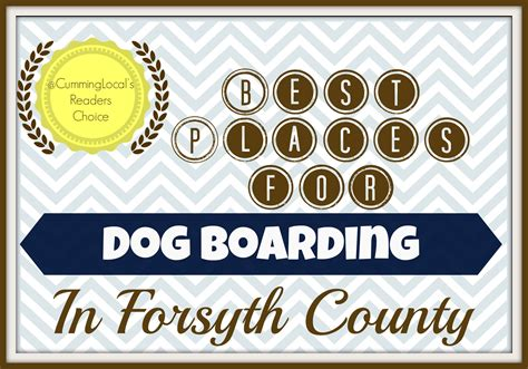 boarding places for dogs best places for boarding in forsyth county local things to do in