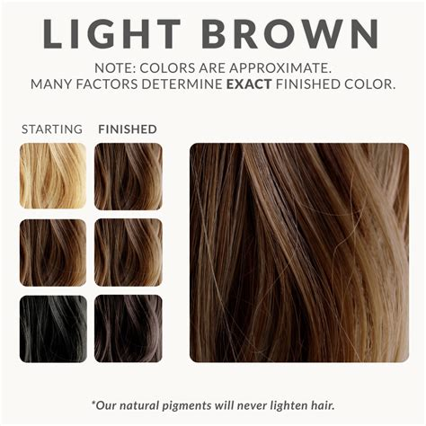 light brown hair color chart chestnut brown and light brown henna color chart on black
