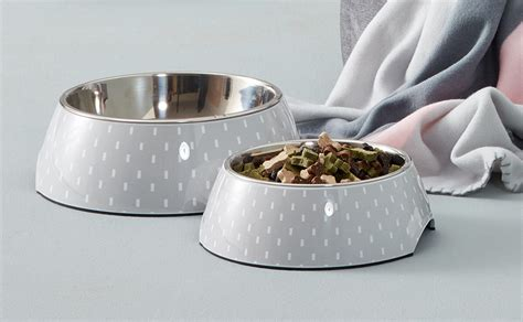 puppy feeding bowls food bowls foodbowl food whippy stainless steel bowls set of 2 simplicity