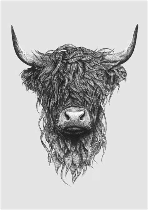 highland cattle art print bilder tattoo ideen und